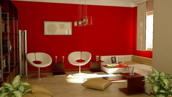 salon-duvar-renkleri-45