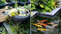 Arka Bahçenizdeki Yeşilliği Güzelleştirecek 21 Küçük Bahçe Akvaryumu
