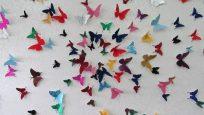 Duvarlarınızı Kelebeklerle Süsleyin