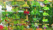 Yaratıcı Bahçe Fikirleri