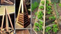 Dar Alanlar için Dikey Bahçe Çözüm Önerileri