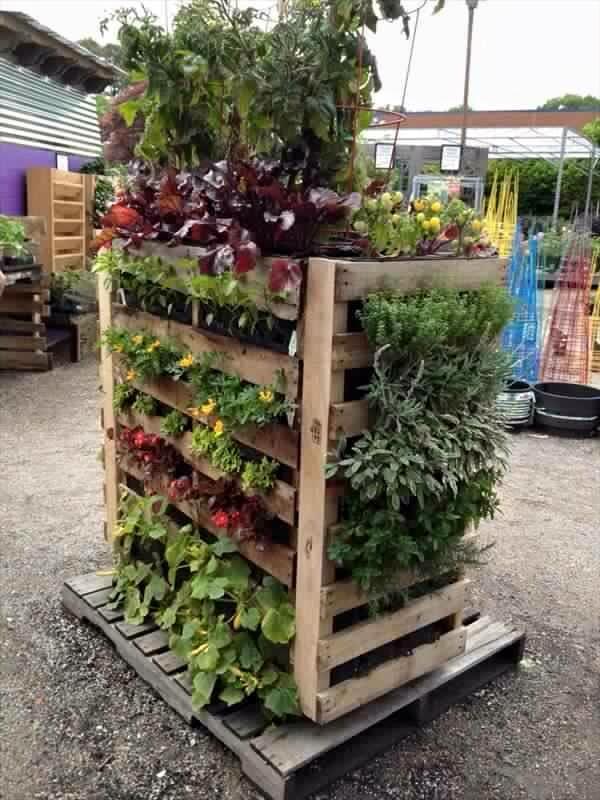 Dar Alanlar için Dikey Bahçe Çözüm Önerileri 15