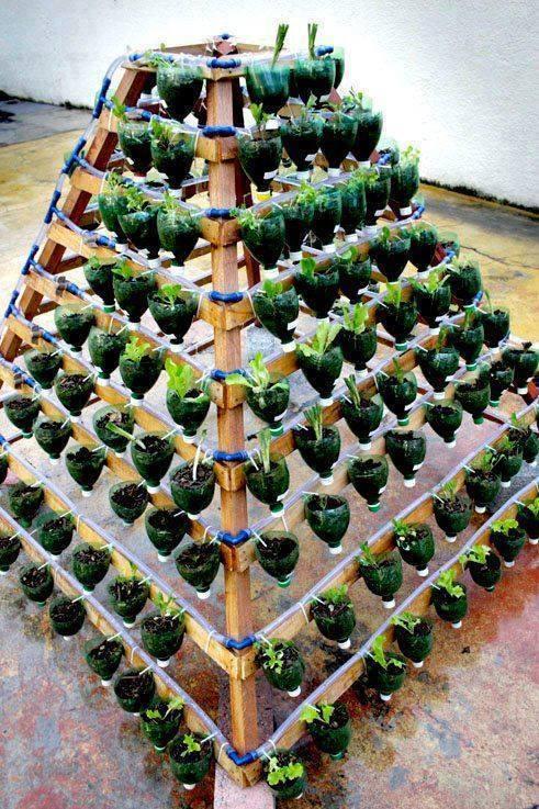 Pet şişelerden Yaratıcı Saksılar Hazırlamak Ev Düzenleme