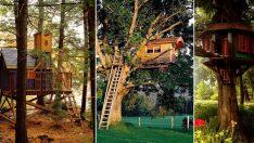 İnşa Edebileceğiniz Hayallerinizi Süsleyecek 24 Ağaç Ev